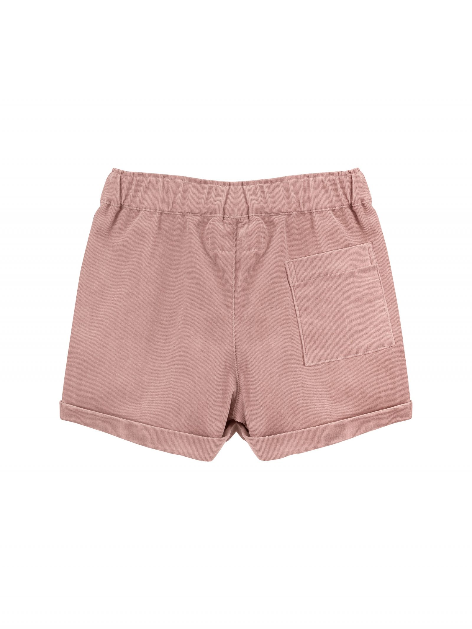Charlotte Cord Shorts in Pink - Back